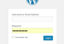How to Secure WordPress Without Plugin(s)