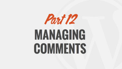 Managing Comments in WordPress – by WP101