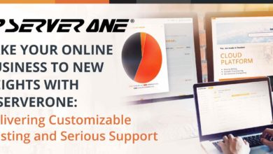 Take Your Online Business to New Heights with IPServerOne: Delivering Customizable Hosting and Serious Support